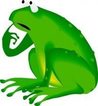 Frogs Into Princes Neuro Linguistic Programming Pdf